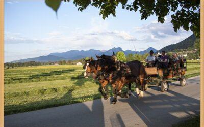 Pferdekutschen-Fahrt